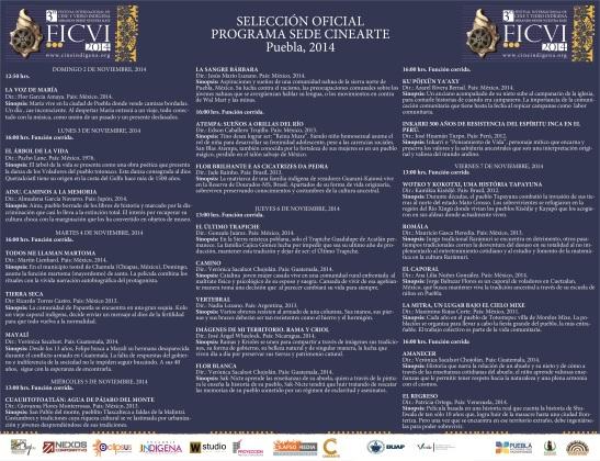 CARTEL DEL FICVI 2014 con logos